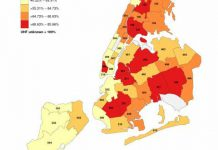 NYC-covid-19-daily-data-summary